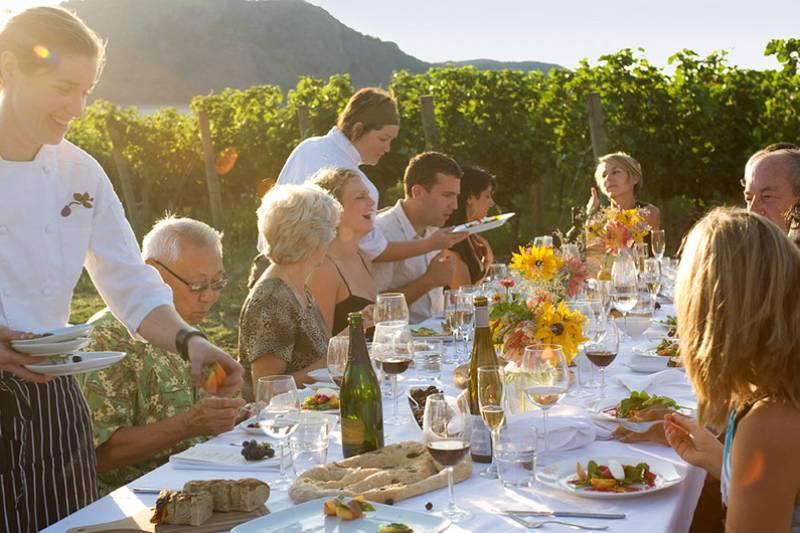 VINEYARD DINNER WITH WINE TASTING
