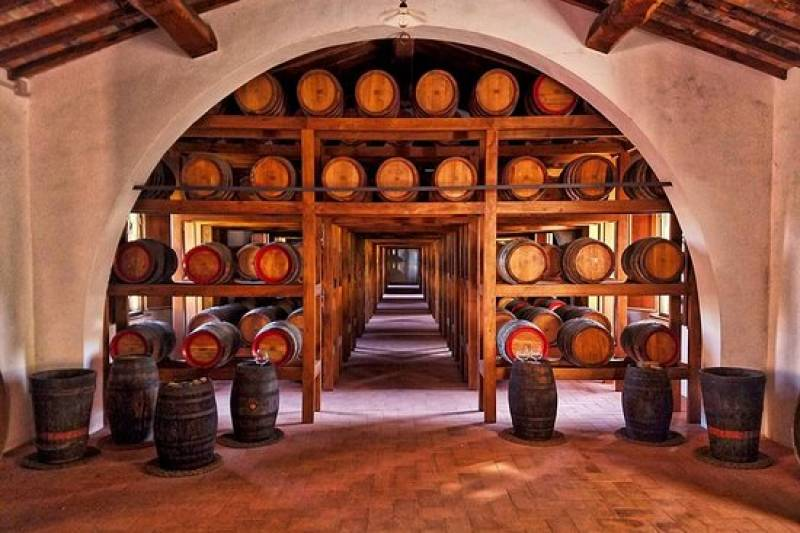 MIDDAY TOUR & WINELOVER'S LUNCH