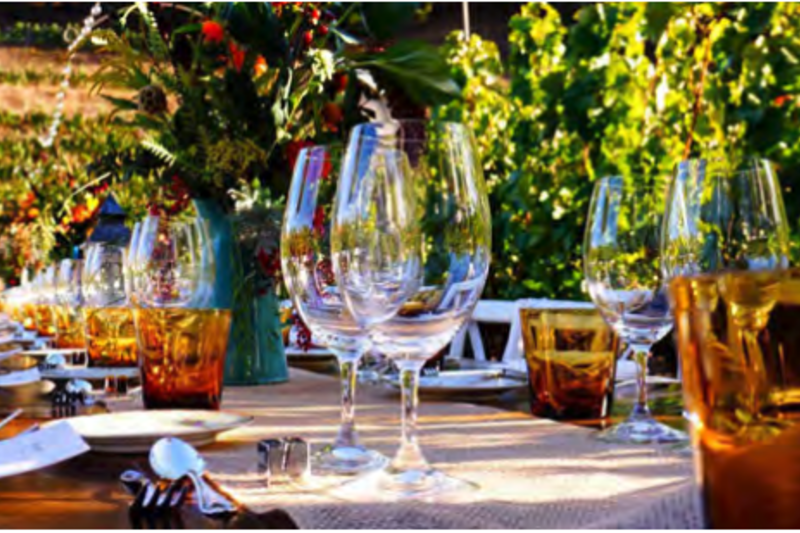 DINNER IN THE VINEYARD WITH WINETASTING