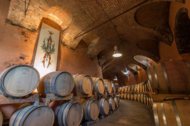 TOUR AND WINE TASTING PAIRED WITH LOCAL FOOD